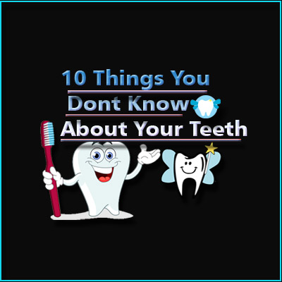 About Your Teeth